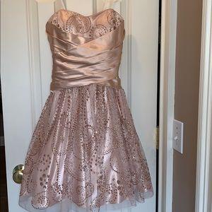 Adrianna Papell semi formal dress.